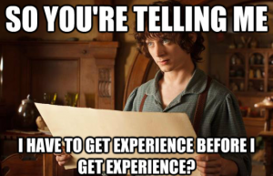 Students often find job hunting difficult due to lack of experience